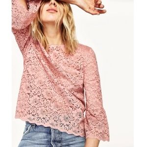 Zara Women's Pink Lace Frill Sleeve Top